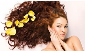 Окрашенные волосы уход, укрепление, питание и восстановление