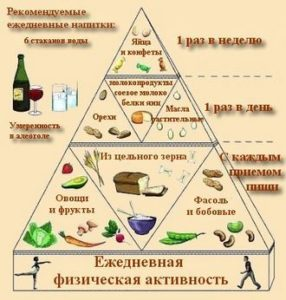 Растительная и животная вегетарианская пища