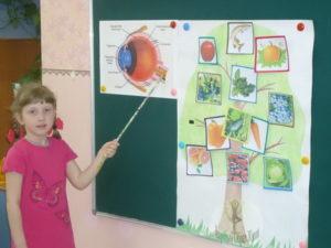 Зрительная память у дошкольников